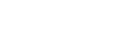 TuliPark – Acquista Tulipani online